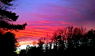 Evening sky from my porch in Charlottesville