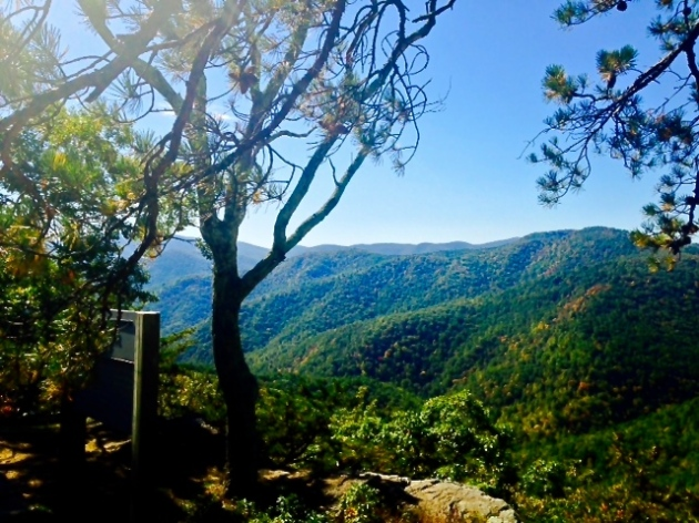 An overlook on the Blue Ridge Parkway